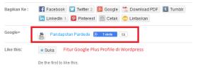 Google Plus Profile di WordPress