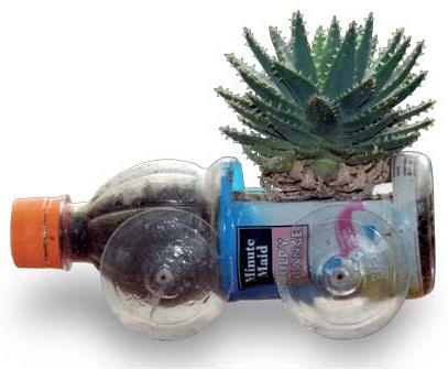 Pot Bunga Unik dari Botol Plastik Bekas