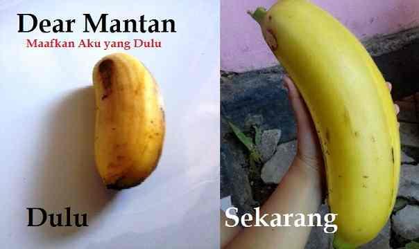 Kumpulan Meme Dear Mantan Maafin Aku Yang Dulu (13)
